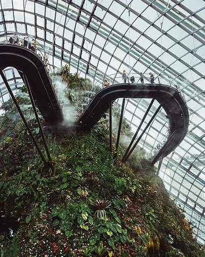 Singapore-Gardens-by-the-Bay-Cloud-Forest-2.jpg